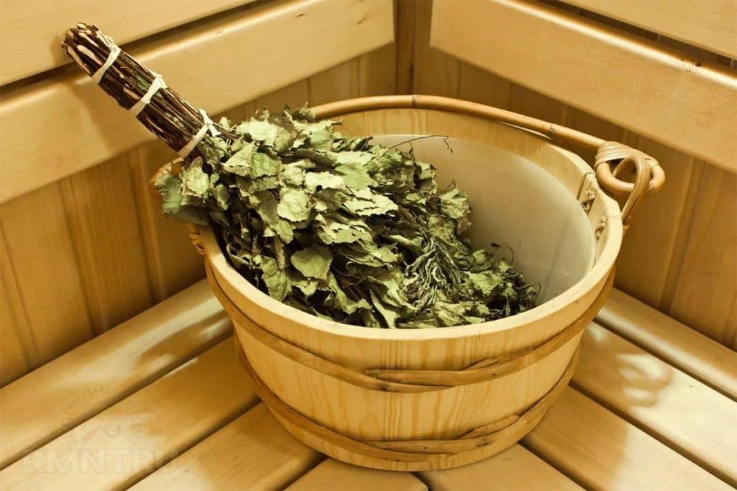 Когда и как заготавливать березовые веники для бани?
