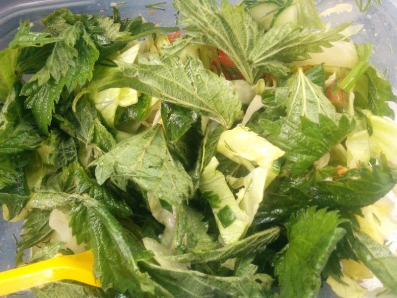 3 салата из крапивы и одуванчиков, без которых шашлык не такой вкусный