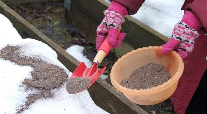 11 полезных свойств древесной золы для дома и огорода