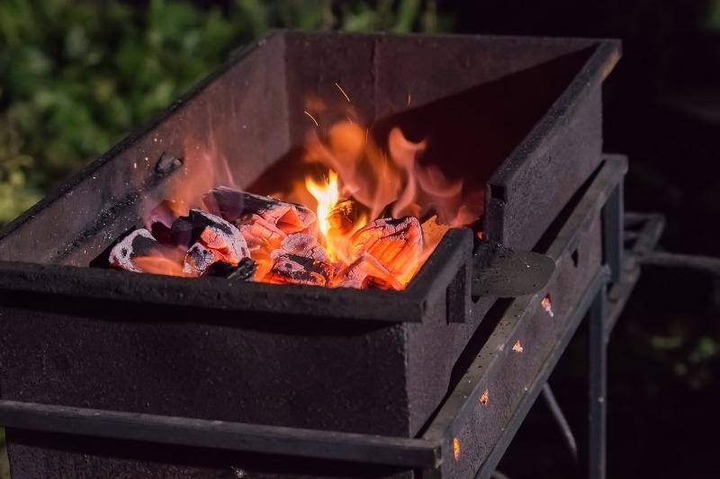 Соль на угли и вишневые ветки: 5 основ приготовления вкусного шашлыка