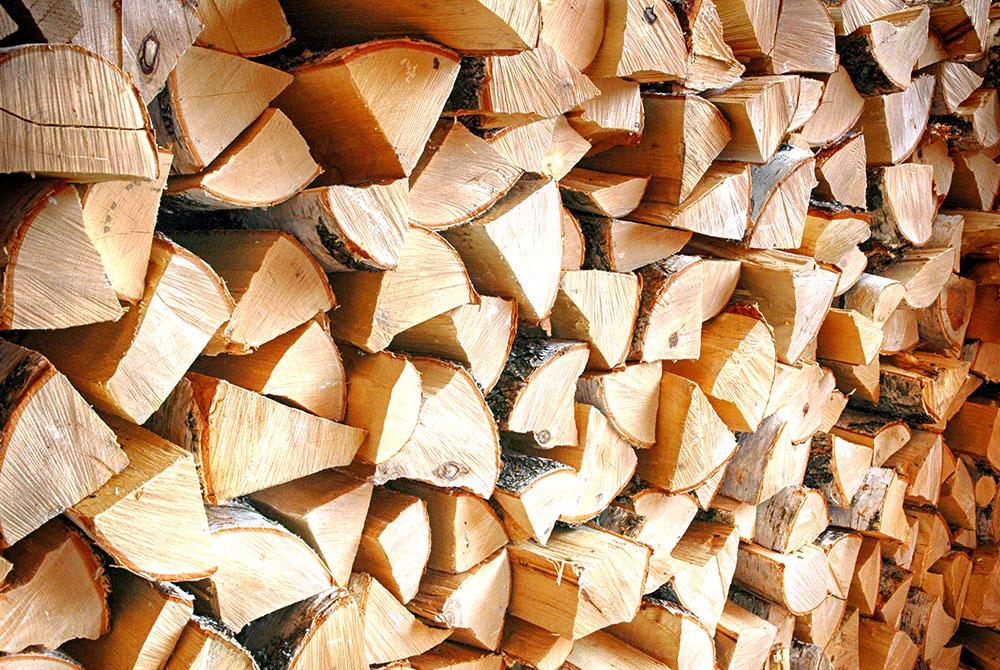 Какими дровами лучше топить печь